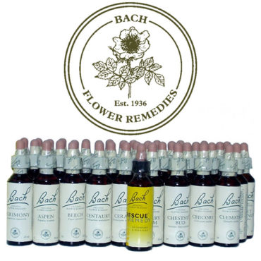 Bach Flower Remedies